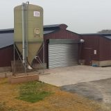 silo shed painting